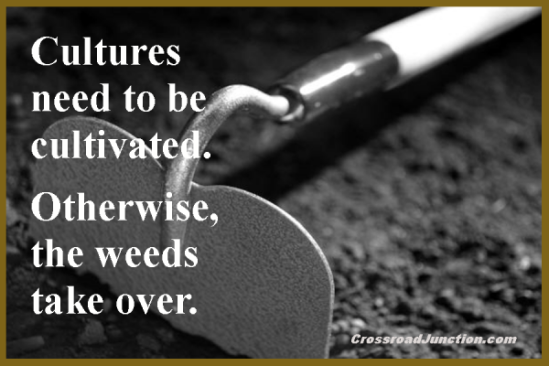 Cultures need to be cultivated. Otherwise, the weeds take over.